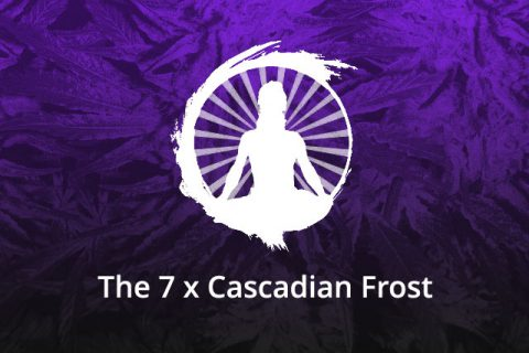 The 7 x Cascadian Frost